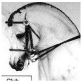 Club Equestre Sueca