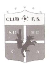 Club Futbol Sala Sueca